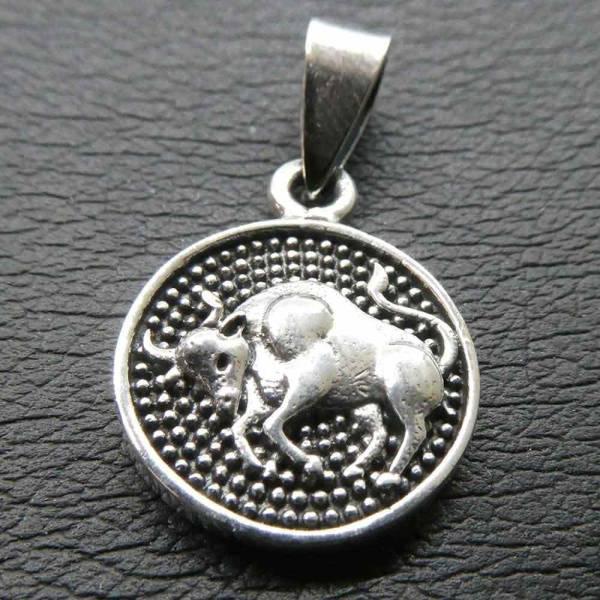 Stier Sternzeichen Silber Schmuck Tierkreis astrologie