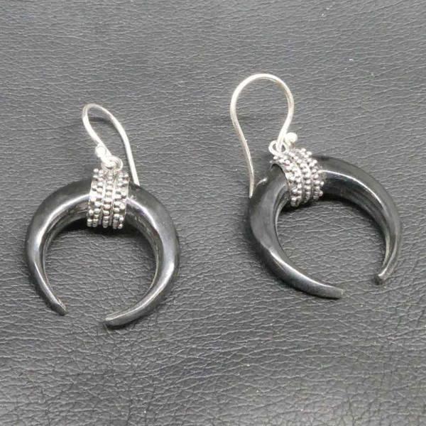 Ohrringe Silber Horn Kombination einhänger