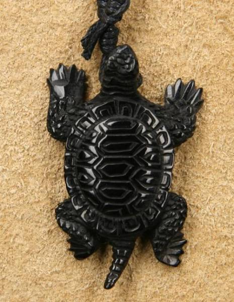 Schildkröte Kette Schmuck Horn